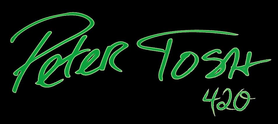 sig-logo-green-boarder